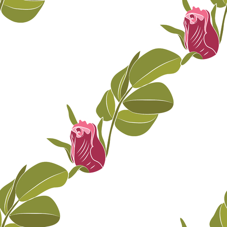 burgundy rose with a branch of leaves on handmade white background vector art abstract creative pattern Illustration