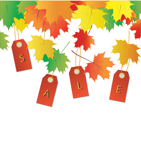 lowering: Autumn sale banner colorful leaves tags vector art creative modern isolated white background elements for design