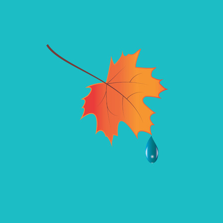 lowering: colorful autumn leaf raindrop art creative modern isolated light blue background Vector elements for design Illustration