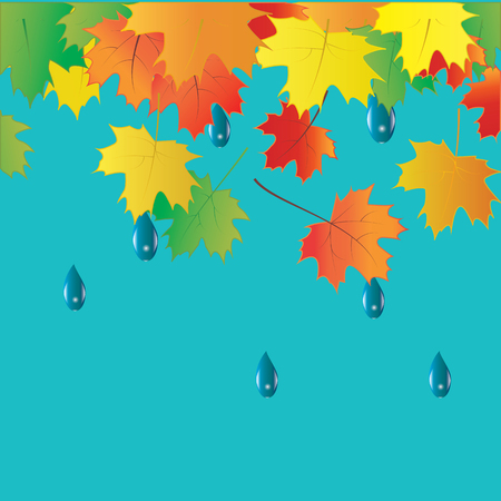 lowering: colorful autumn leaves raindrops vector art creative modern isolated light blue background elements for design