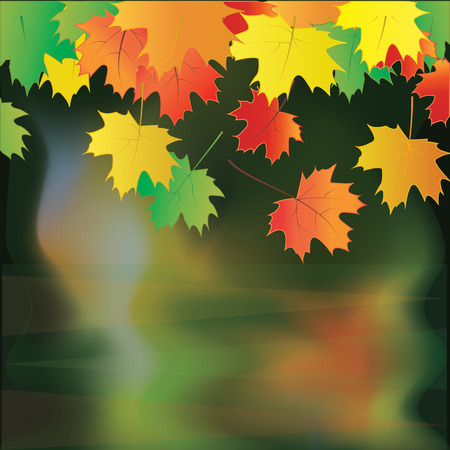 autumn colorful fall leaves reflected in water modern art creative abstract vector dark background Illustration
