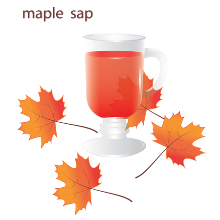 maple sap in a transparent glass autumn leaves isolated on white background vector design element