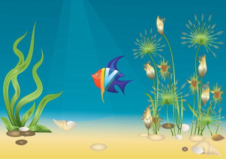 Underwater World Aquarium Fish bright a multicolored flowers seaweed shell stones art creative modern vector illustration Illustration