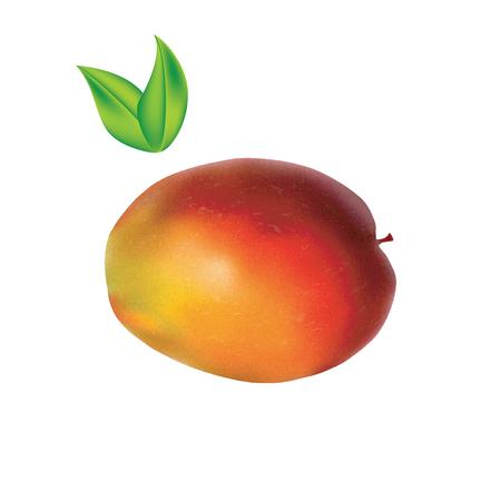 ripe mango realistic green leaves isolated on white background art creative bitmap image