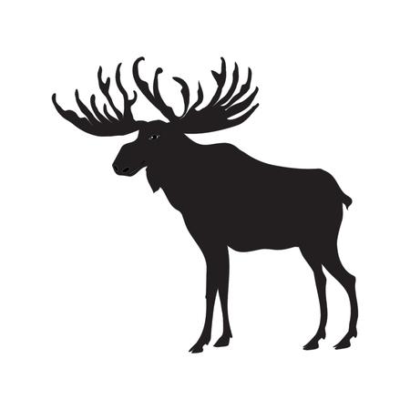 Elk sketch black isolated on white background, art creative modern vector illustration. Travel Banner. Hunters Banner Illustration