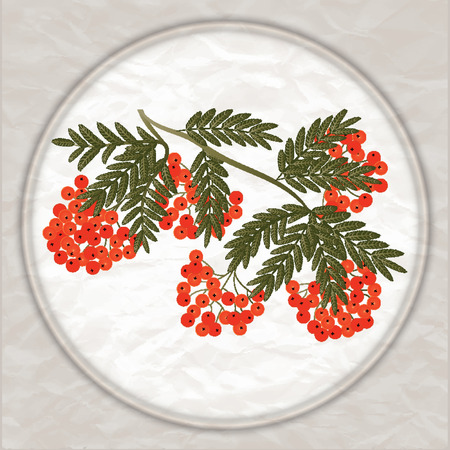 Bunch of red rowan in a round frame - original abstract marble background - art creative vector