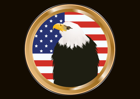 Badge golden - Eagle - head on the background of the American flag - isolated - art vector