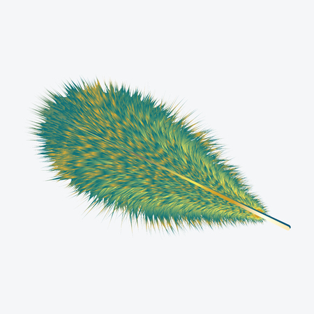 Feather exotic bird green - yellow - realistic - isolated on white background - vector art illustration Illustration