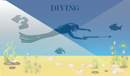 Underwater world, seaweed, seashells. Scuba diver with underwater gun. Vector art illustration.
