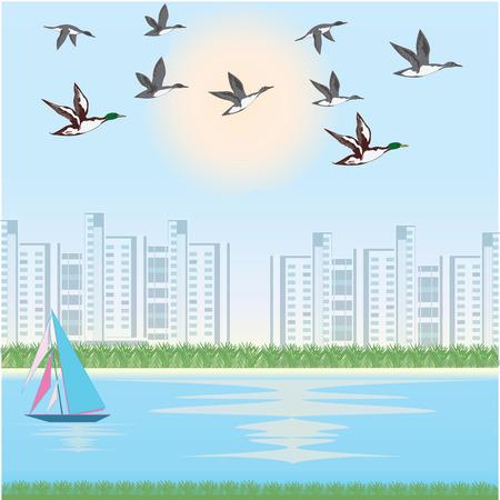 A flock of ducks, cityscape, river, yacht. Art vector illustration. Spring poster. Illusztráció
