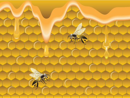 Nids d'abeilles, miel dégoulinant, abeilles - vecteur. Concept de produits naturels