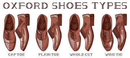 Vector illustration of men's suit oxford shoes set: cap toe, plain toe, whole cut, wing tig. Vintage drawing style. Ilustração