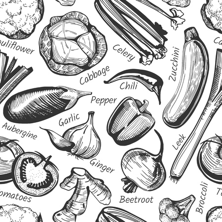 Vector seamless pattern of hand-drawn vegetables with labels on white. Broccoli, cauliflower, cabbage, beetroot, potatoes, aubergine, zucchini, carrot, onion, celery, ginger, garlic, tomatoes, cucumber, pepper, chili, leek Çizim