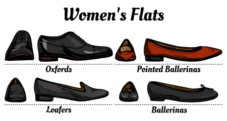 Womens flats shoes types classification set. Oxfords, loafers, simple and pointed ballerinas.