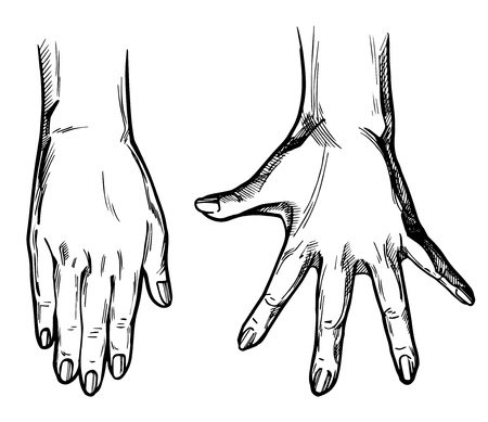 Vector illustration of 2 hands set – straight palm with fingers picked altogether and second with wide spread fingers. Vintage hand drawn or comic book style.