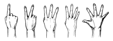 quantity: Vector illustration set of a counting with fingers hands 1,2,3,4,5 (one, two, three, four, five). Vintage hand drawn or comic book style.