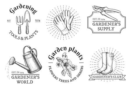 Ilustracja wektorowa kompozycji typografii ogrodniczej z ręcznie rysowanymi obiektami: rękawiczki, sekator, kalosze, widelec i łopata, konewka, kwiaty bratka. Etykiety w stylu vintage hipster.
