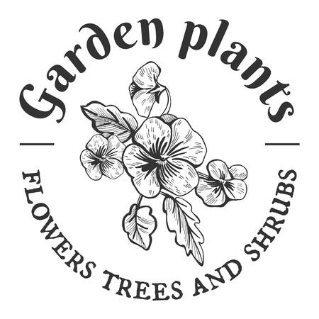 ベクトルヴィンテージエンブレム。庭の植物、花、木や低木。パンジーブッシュ手描きオブジェクト。