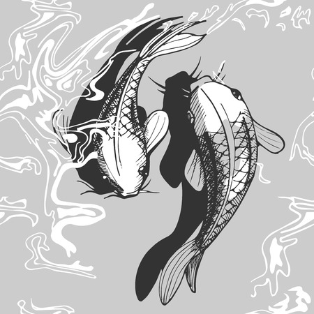 Vector illustration of a koi fish. Black and white handdrawn style. Çizim