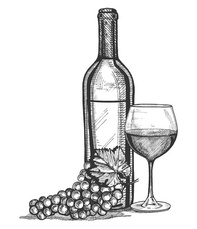 Vector illustration of a wine glass, bottle and grapes bunch still life. Vintage engraving style.