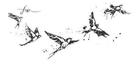 Ilustraciones vectoriales de un conjunto dinámico de aves golondrinas voladoras. Arte moderno de la pintura incompleta de la tinta que salpica. Dibujo monocromático en blanco y negro con etiqueta floreciente de caligrafía gratis. Perfecto tatuaje o estampado de camiseta.