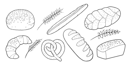 Vector illustration of a bakery bread set. Bun with sesame seeds, croissant, pretzel, French long loaf, braid, woven, spikelet of wheat. Vintage hand drawn engraving style Illustration