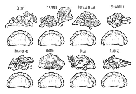 Vector illustration of dumplings with different fillings. Cherry, spinach, cottage cheese, strawberry, mushrooms, mashed potatoes, meat, cabbage. Vintage hand drawn drawing style.