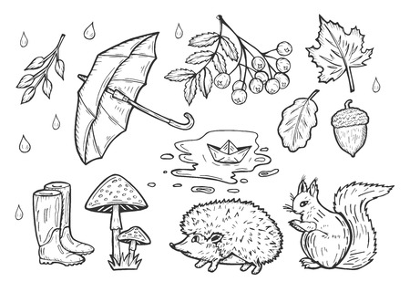 Vector hand drawn illustration of the autumn weather set. Rain drops, open umbrella, rubber boots, falling leave, a bunch of rowan, fly agaric mushrooms, squirrel, hedgehog, puddle with paper ship.