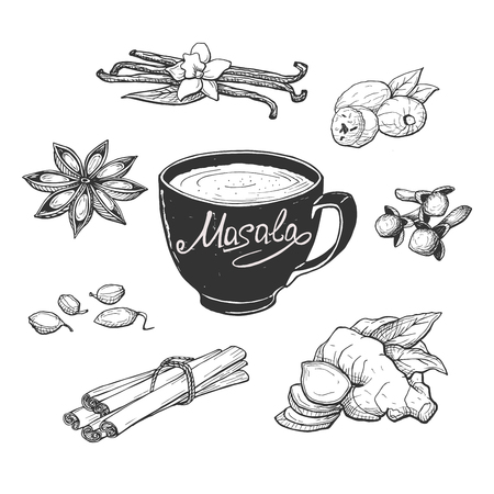 Vector illustration of masala milk tea cup and spices. Anise, clove, vanilla, cardamom, cinnamon sticks, ginger, nutmeg. Hand drawn engraving style. Vectores
