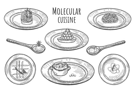 Vector illustration of molecular cuisine dishes. Extravagant fantasy food served on the plates and spoons.