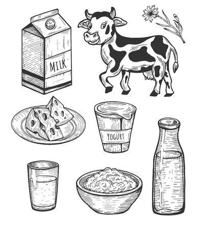Vector illustration of milk food set. Milk in different packages such as bottle, tetrapack, glass, cheese on plate, curd in dish, yogurt. Vintage hand drawn style.