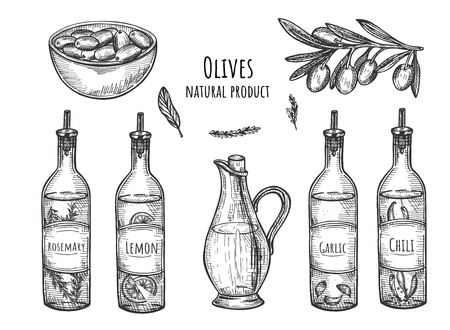 Vector illustration of natural olives products set. Olive and different types of oil from it with rosemary, lemon, chili, garlic, branch of tree, ripe fruit dish. Vintage hand drawn style.