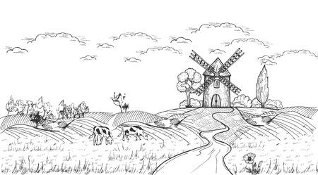 Illustrazione vettoriale di bella vista laterale del paese realistico con mulino a vento, campo dopo il raccolto, pascolo libero e mucche, molti alberi. Stile vintage disegnato a mano