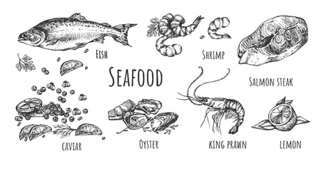 Vector illustration of seafood set. Fish, shrimp, salmon steak, caviar, oyster, king prawn, lemon and other flavoring spices. Vintage hand drawn style.