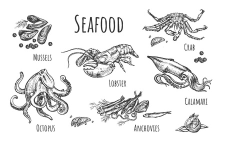 Vector illustration of seafood set. Mussels, lobster, crab, octopus, anchovies, calamari. Vintage hand drawn style.