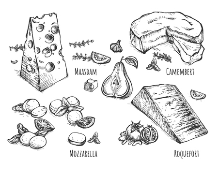 Vector illustration of cheese and food set. Maasdam, basil and tomatoes, Camambert, garlic and pear, mozzarella pignolia nuts and rocca salad, Roquefort, blue and pear. Vintage hand drawn style. Ilustração