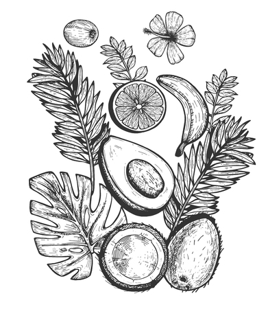 Vector illustration of exotic tropical fruits set. Whole and cut in half avocado, coconut, citrus, kiwi, banana decorated with palm, monstera leaves and flower. Vintage hand drawn style.