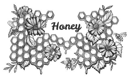 Ilustracja wektorowa zestawu miodu. Słodka kompozycja z kwitnącymi kwiatami i pracującymi pszczołami na tle o strukturze plastra miodu i napisem. Styl Vintage ręcznie rysowane. Ilustracje wektorowe