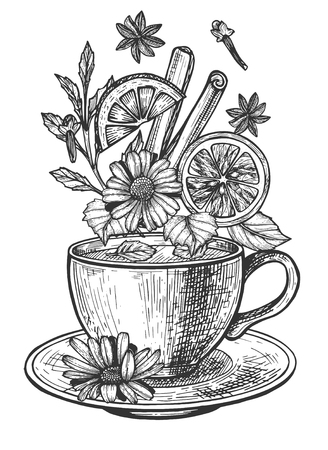 Vector illustration of tea with levitating herbs ingredients set. Cup on saucer with camomile flowers, clove, citrus, orange slice, cinnamon, mint herbal healthy hot drink. Vintage hand drawn style.