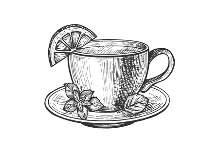 Vector illustration of tea service sketch set. Hot beverage in cup with lemon and mint branch decoration. Vintage hand drawn style.