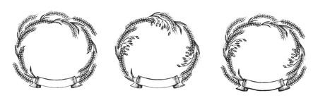 Illustrazione vettoriale di set di cornici cerimoniali ad alto dettaglio. Corone di grano con nastro simbolo agricolo riconoscimento premio araldica nobiltà e logo classici. Stile vintage disegnato a mano.