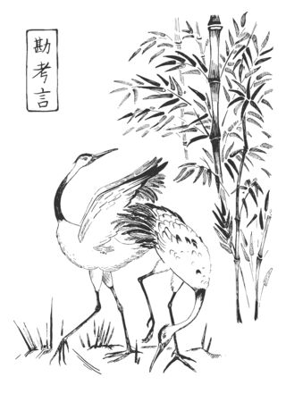 Vector illustration of Japanese oriental composition. Pair of cranes and bamboo. Hieroglyph meaning intuition, think, word. Vintage hand drawn style.