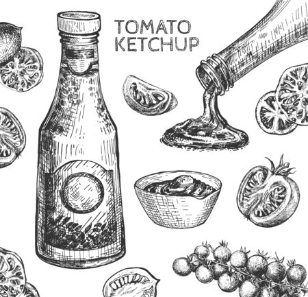 Vector illustration of food flavor and veggies still life. Tomato ketchup in glass bottle and saucer. Fresh vegetables. Sliced, cut and whole tomatoes, bunch of chili. Vintage hand drawn style.