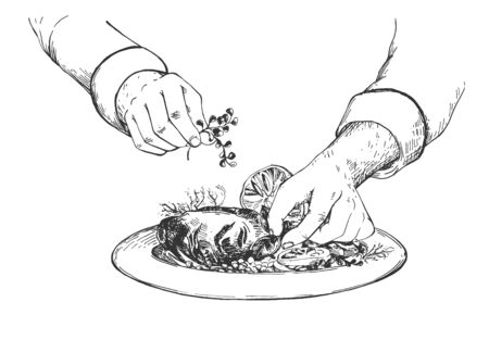 Vector illustration of cooking process. Chef cook hands decorating restaurant food on plate with herbs. Vintage hand drawn style.