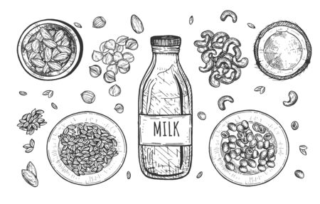Vector illustration of nut milk composition. Coconut, cashews, almonds, soy, oatmeal, hazelnuts. Vintage hand drawn style.
