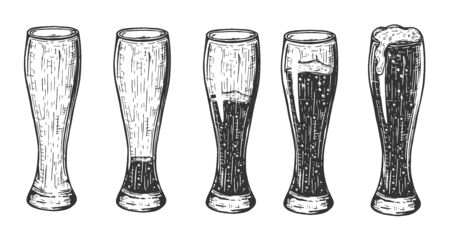 Vector illustration of beer in weizen glass set. Empty, a little bit, half, three quarters, full. Vintage hand drawn style.