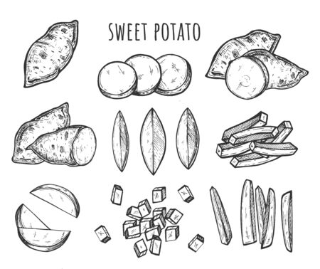 Vector illustration of sweet potato cutting and slicing styles. Full, halves, wedges, slices, cubes, sticks, blocks. Great for menu, label, icon. Vintage hand drawn style. Çizim