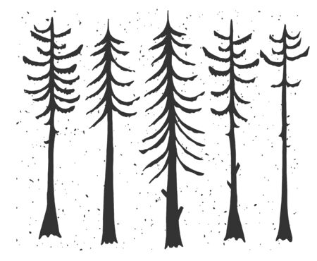 Vector illustration of cypress evergreen set. Simple stencil forest pine trees, winter cedar forest wood nature, snowy weather. Vintage hand drawn style.