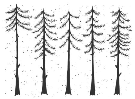 Vector illustration of cypress evergreen set. Simple stencil forest pine trees, winter cedar forest wood nature, snowy weather. Vintage hand drawn style. Standard-Bild - 137998364
