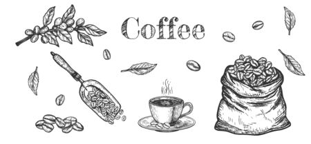 Vector illustration of coffee beans objects set. Branch with fresh berries, cup, pouch. Vintage hand drawn style. Ilustracja